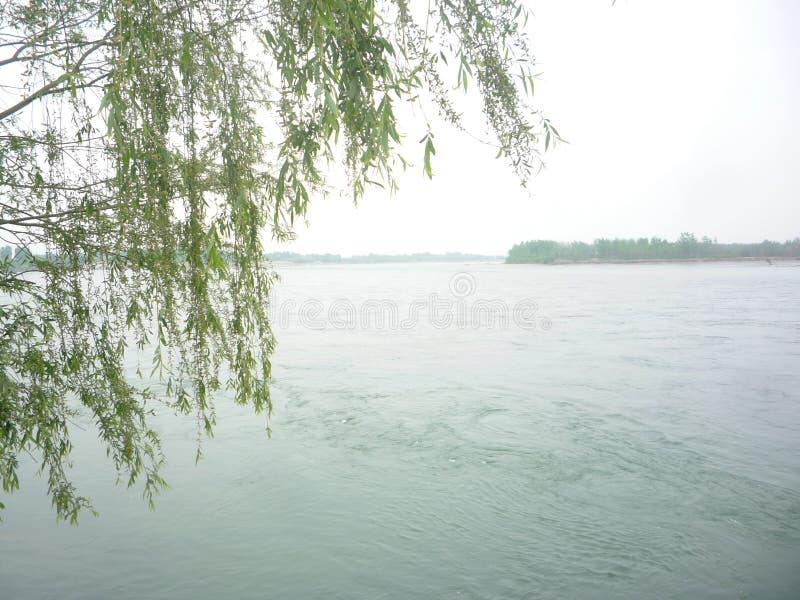 Yiyi Willow River arkivfoto