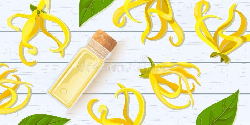 Ylang ylangblomma Nödvändig olja för Canangaodorata i exponeringsglasdoftflaska med kork på det vita träsjaskiga skrivbordet H?rl vektor illustrationer