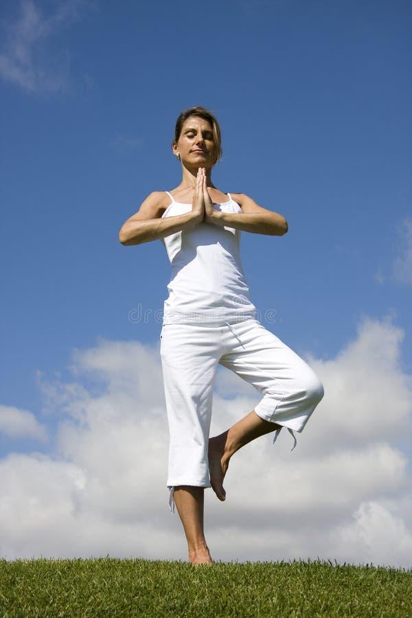 Download Yoga stock image. Image of beauty, enjoy, leisure, freshness - 11805217