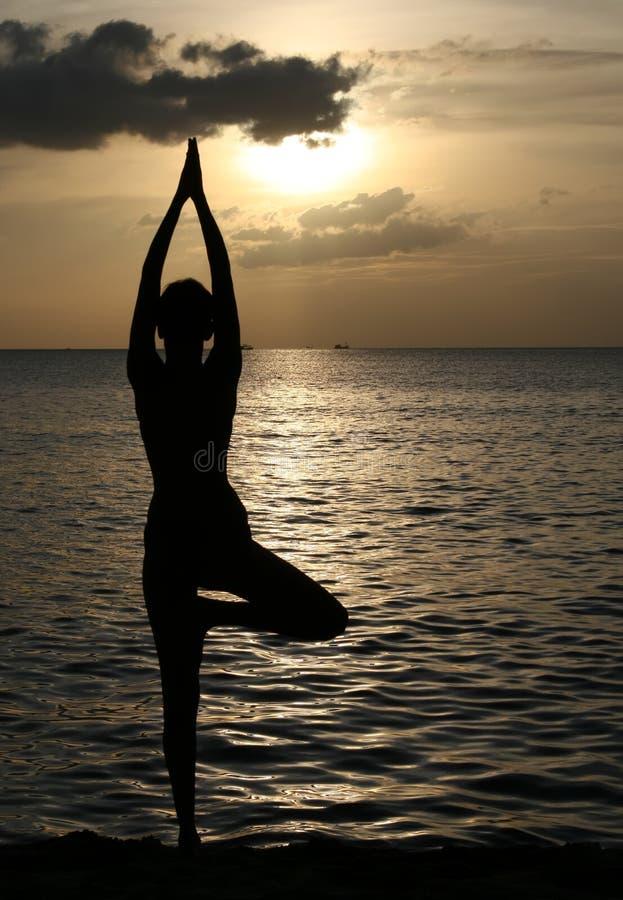 Free Yoga Royalty Free Stock Photos - 27513458