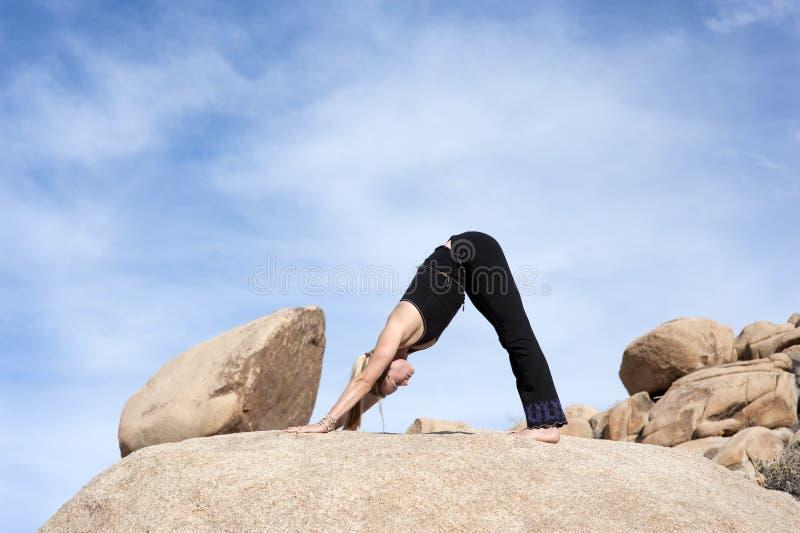 Yoga Adho Mukha Svanasana image libre de droits