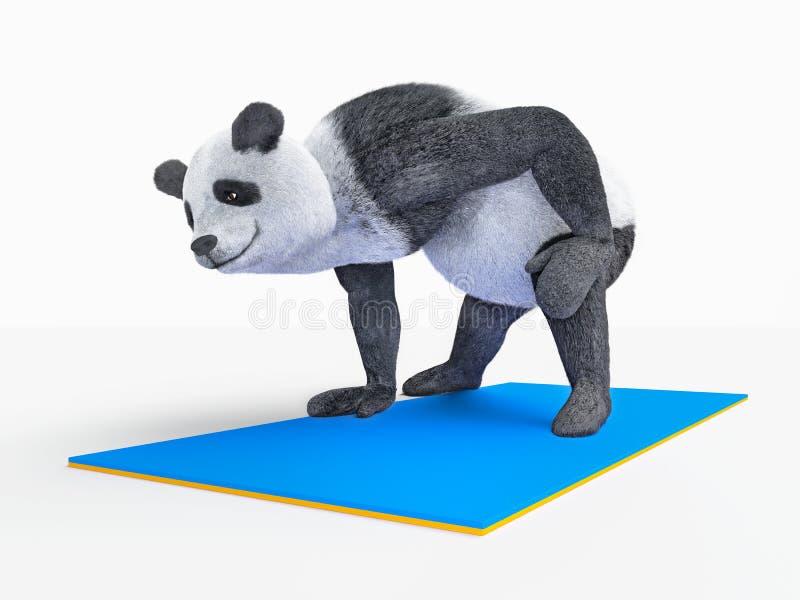 Yoga animal de panda d'ours de caractère de personnalité étirant des exercices illustration de vecteur