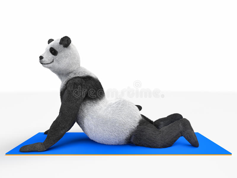 Yoga animal de panda d'ours de caractère de personnalité étirant différentes postures d'exercices illustration de vecteur