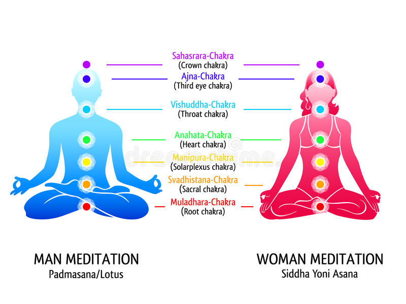 Yoga chakras diagram. Meditation position for man and woman with chakras diagram vector illustration
