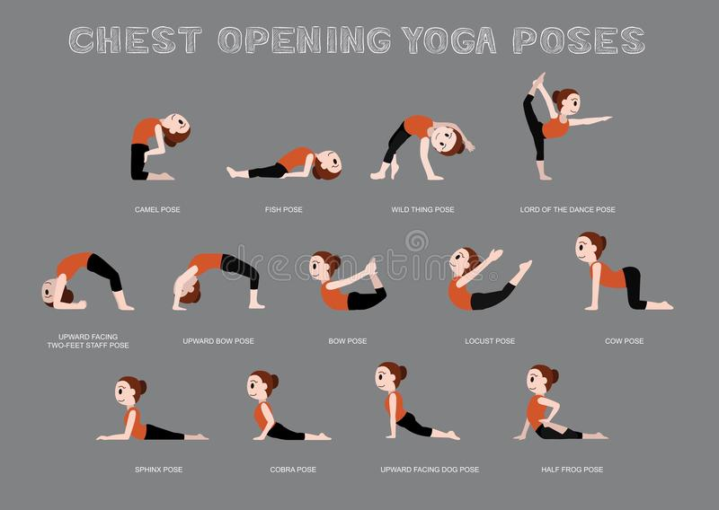 Yoga Chest Opening Poses Vector Illustration vector illustration