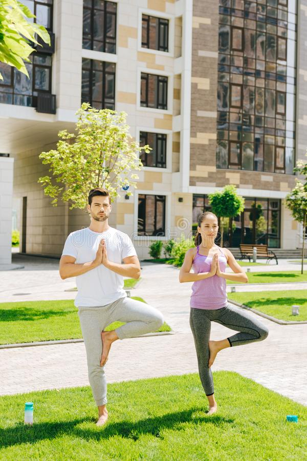Pleasant sporty people having a yoga class royalty free stock images