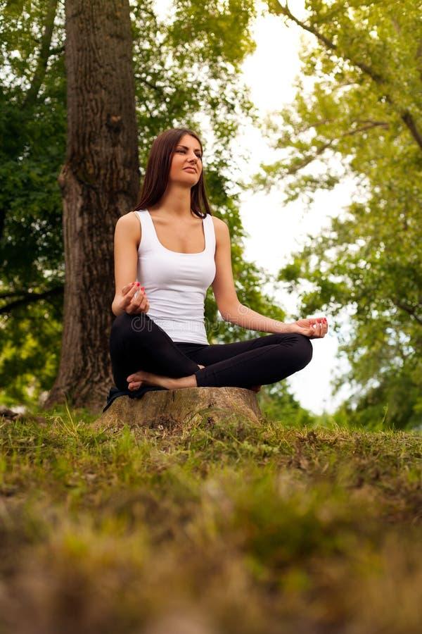 Yoga dans les bois image libre de droits