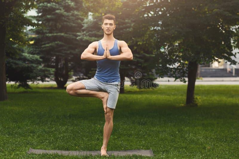 Yoga de formation de jeune homme dans la pose d'arbre dehors photos libres de droits