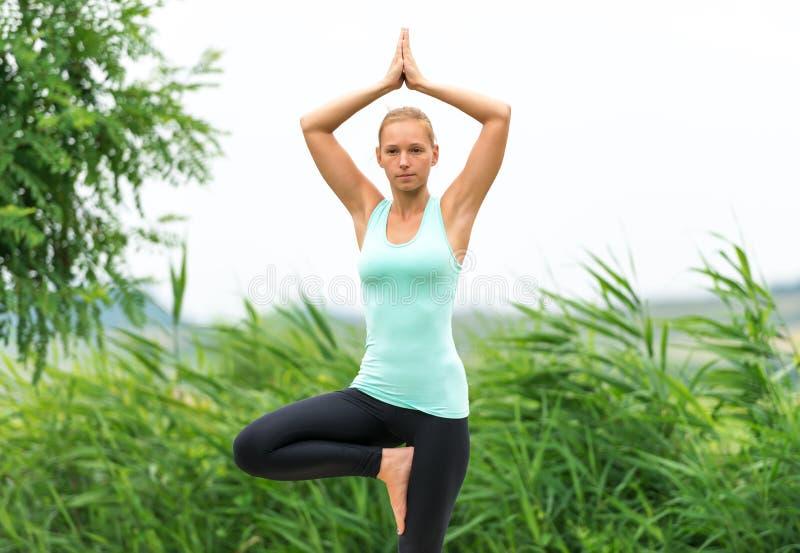 Yoga de pose d'arbre images libres de droits