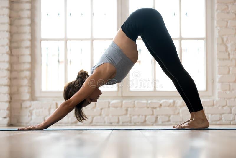 Yoga de pratique de jeune femme sportive, pose orientée vers le bas de chien images libres de droits