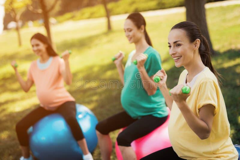 Yoga del embarazo Contratan a tres mujeres embarazadas a aptitud en el parque Se sientan en las bolas para la yoga imagenes de archivo