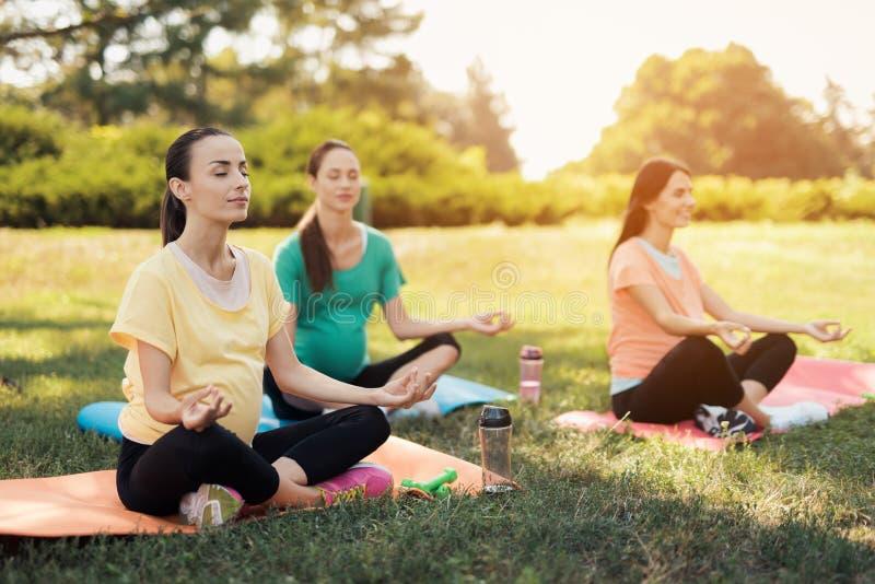 Yoga del embarazo Tres mujeres se sientan en las esteras de la yoga en una actitud del loto y sonríen imagen de archivo