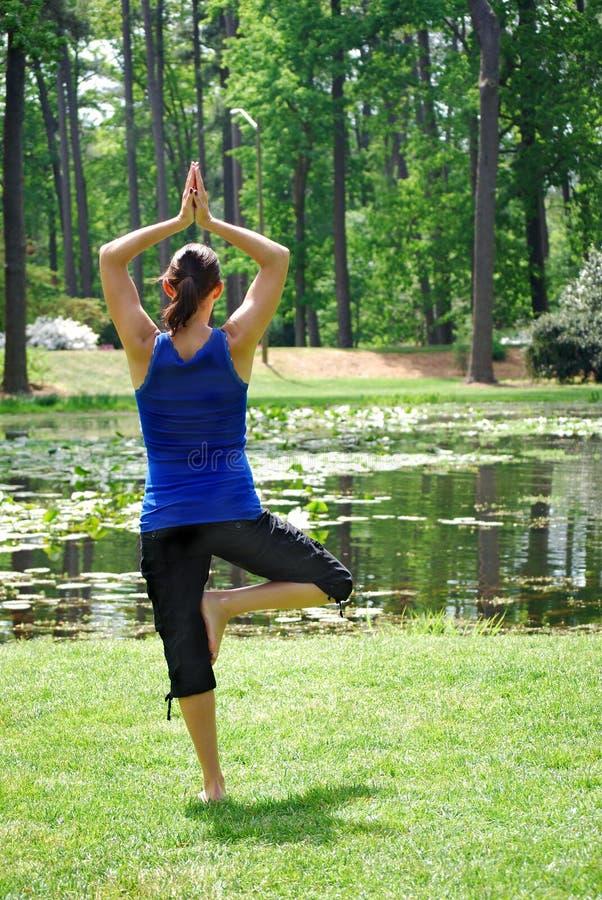 Yoga del jardín imágenes de archivo libres de regalías