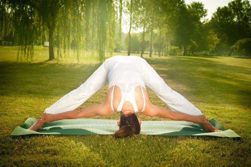 Yoga in der Natur stockbild