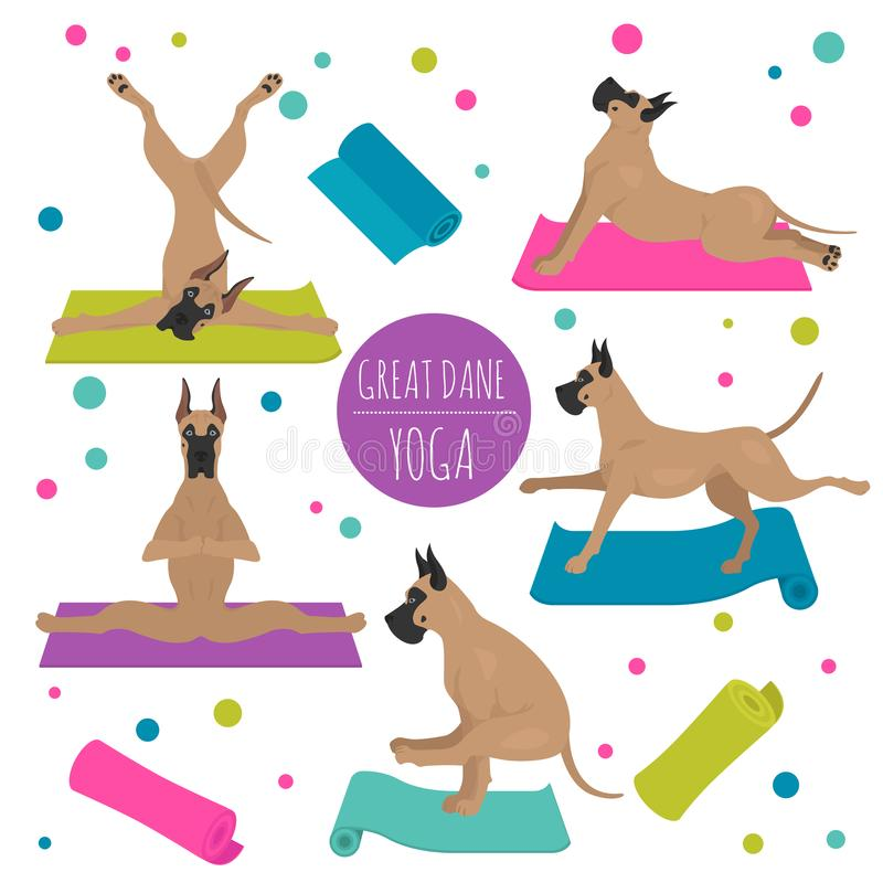 Yoga dogs poses and exercises. Great dane clipart royalty free illustration
