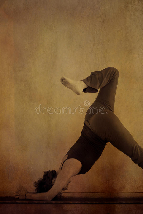 Yoga Dolphin stock images