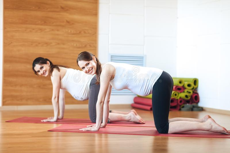 Yoga enceinte Exercice prénatal Beau femme enceinte exécutant le yoga Sérénité et joie aux exercices prénatals de yoga photos stock