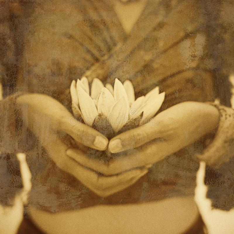 Yoga Enlightenment Lotus Flower royalty free stock images