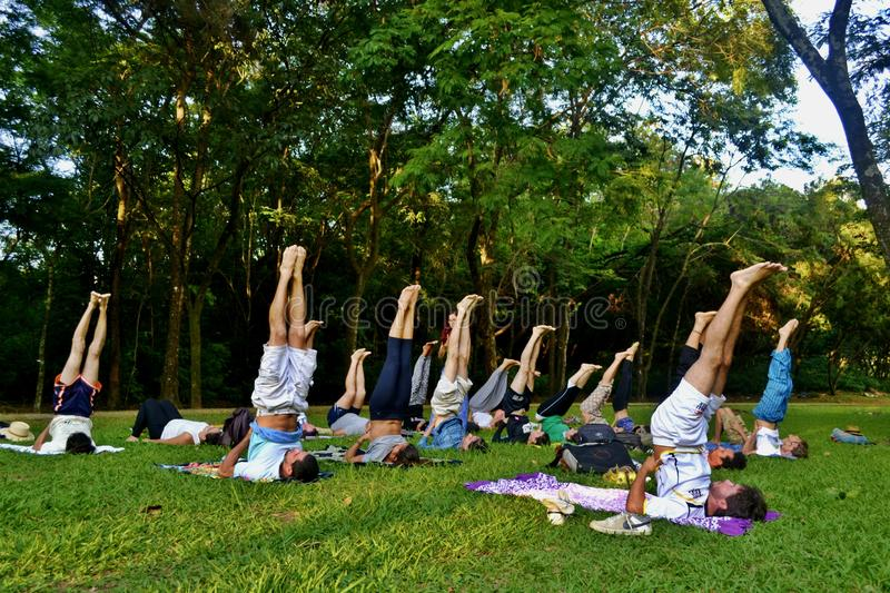 Yoga extérieur - yoga de pratique de personnes en parc photos libres de droits