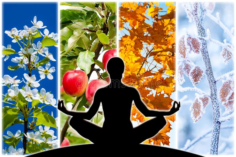 Yoga Four Seasons. Female yoga figure silhouette against collage of four pictures representing each season: spring, summer, autumn and winter royalty free stock photo