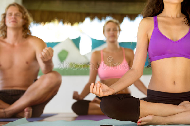 Yoga i natur royaltyfri foto