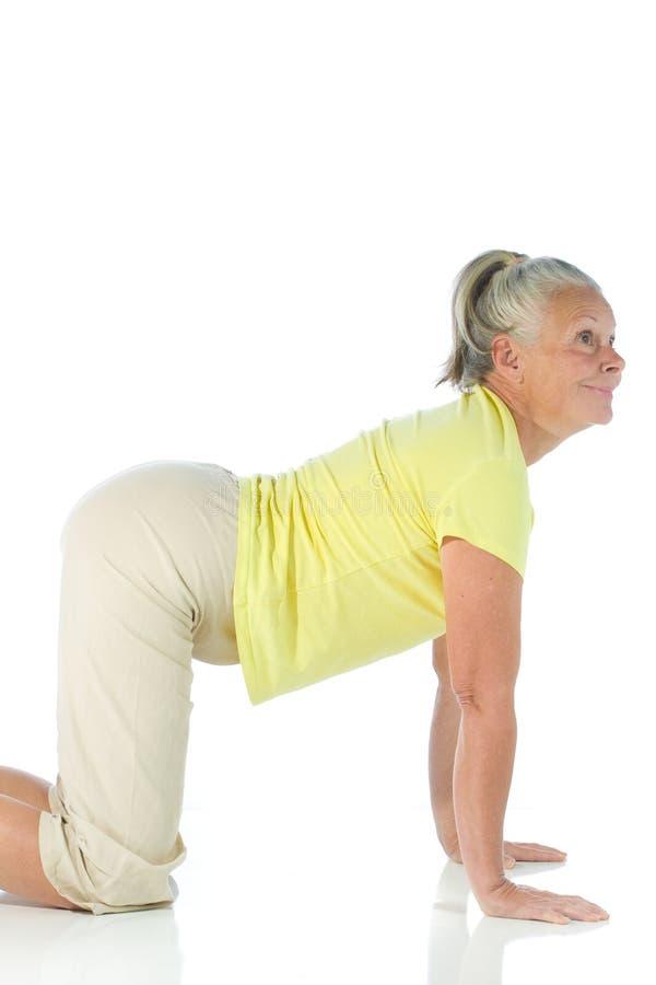 Yoga lady royalty free stock photo