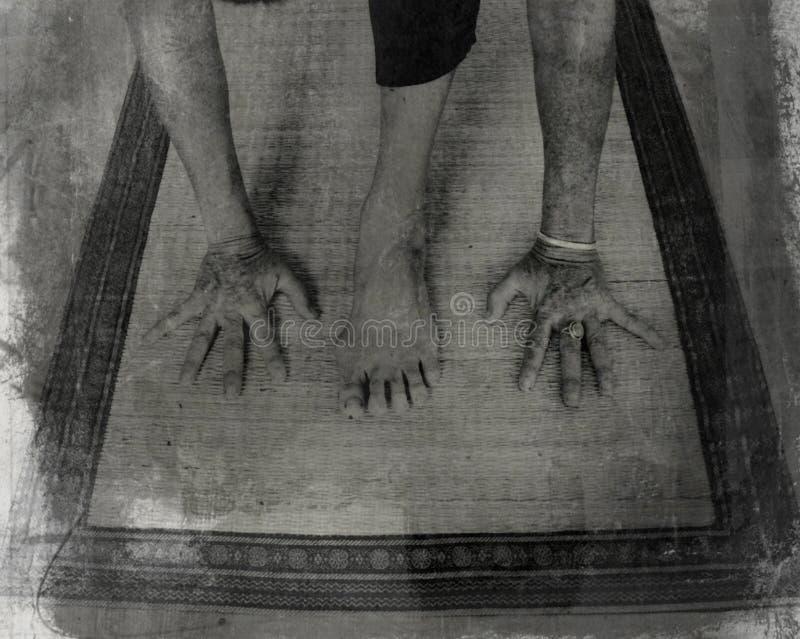 Yoga-Laufleine lizenzfreie stockfotos