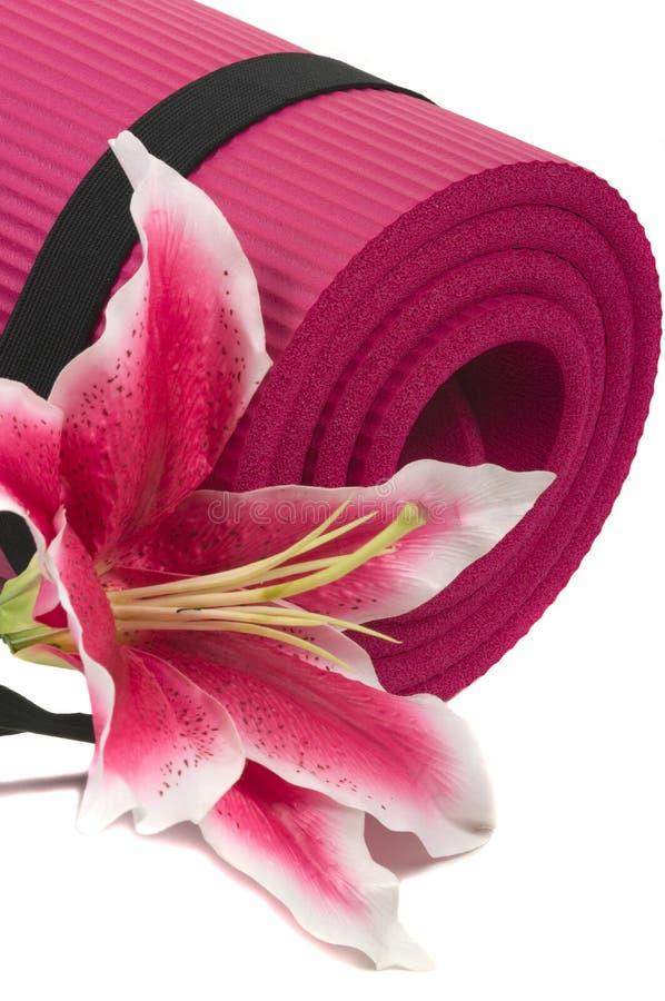 Free Yoga Mat Stock Image - 5353041
