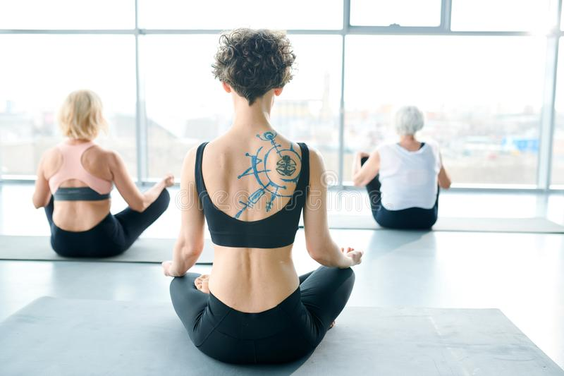 Yoga on mats. Rear view of fit young curly sportswoman sitting on mat in pose of lotus on background of two other females stock image