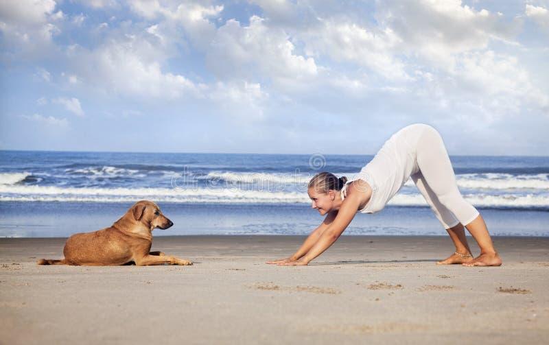 Yoga met hond in India stock afbeeldingen