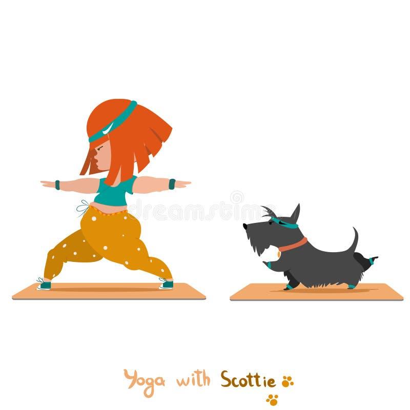 Yoga mit nettem schottischem Terrier lizenzfreie stockfotos