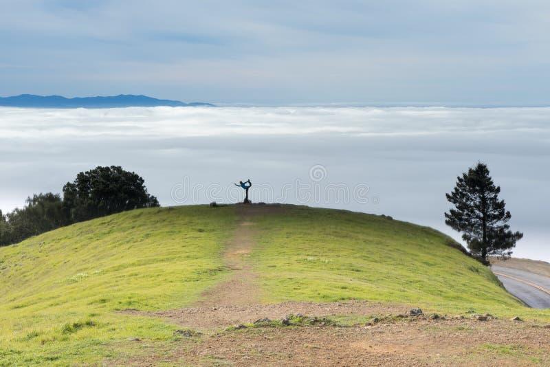 Yoga in Nature. Female in Yoga Posture in Mount Tamalpais, California, USA royalty free stock image