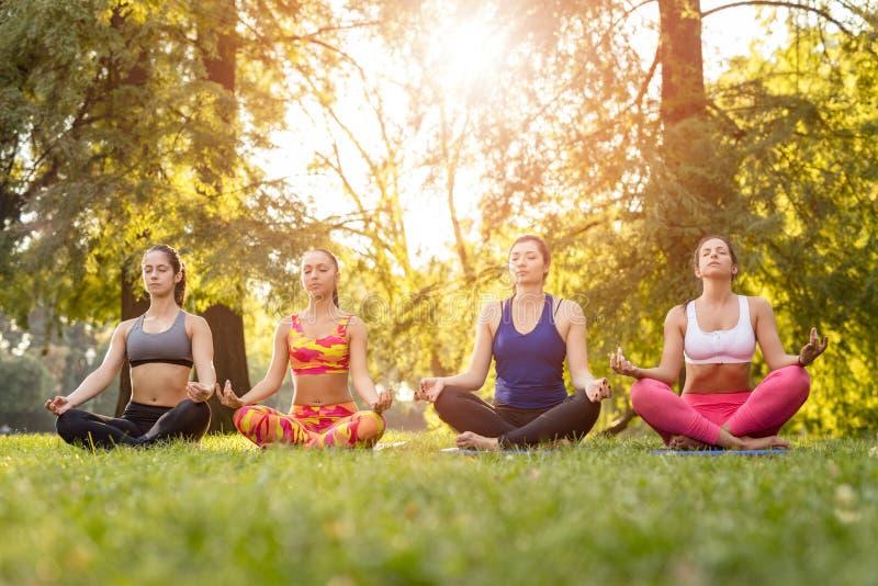 Yoga nella sosta fotografie stock