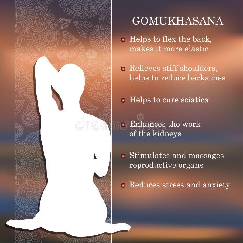 Yoga pose infographics, benefits of practice. Gomukhasana vector illustration