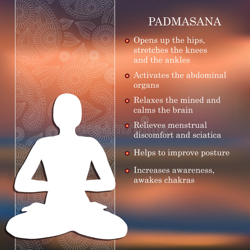 Yoga pose infographics, benefits of practice. Padmasana royalty free illustration