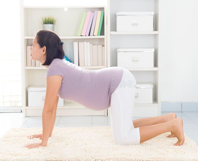 Yoga prénatal à la maison images libres de droits