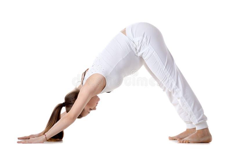 Yoga prénatal, pose orientée vers le bas de yoga de chien photo stock