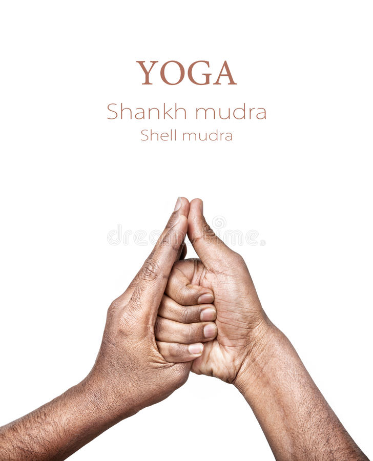 Yoga shankh mudra lizenzfreie stockfotos