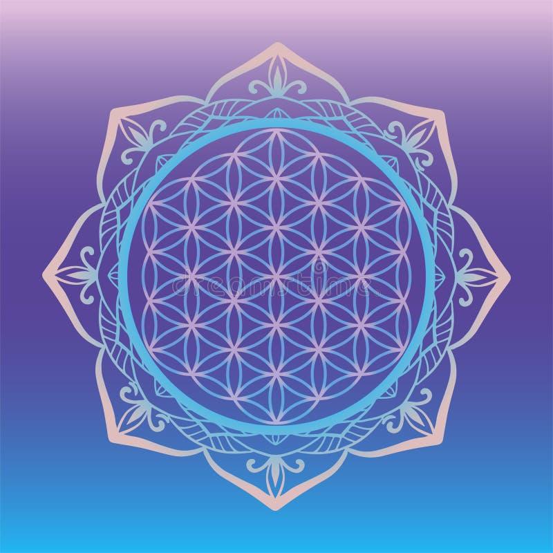 Yoga studio logo, Flower of Life framed with round mandala, sacred geometry symbols and elements for alchemy, spirituality, religi royalty free illustration