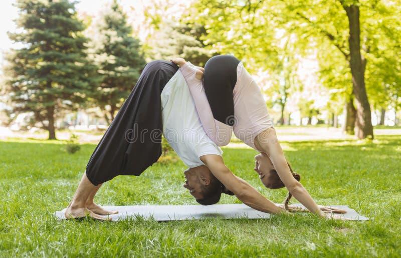 Yoga tillsammans Par av ungdomarden övande acroyogaen utomhus arkivbild