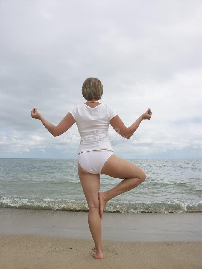 Yoga tree pose stock photos