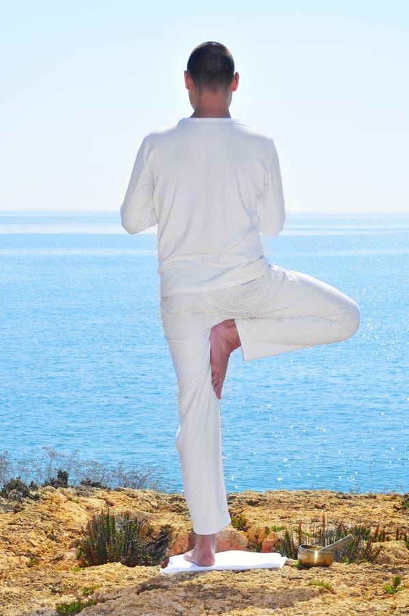 Yoga tree pose royalty free stock photography