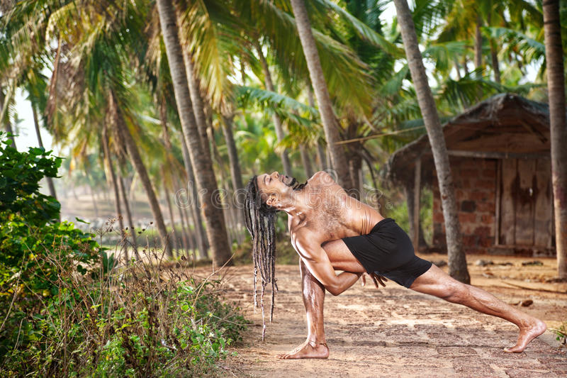 Download Yoga twisting pose stock photo. Image of palm, exercise - 24715964