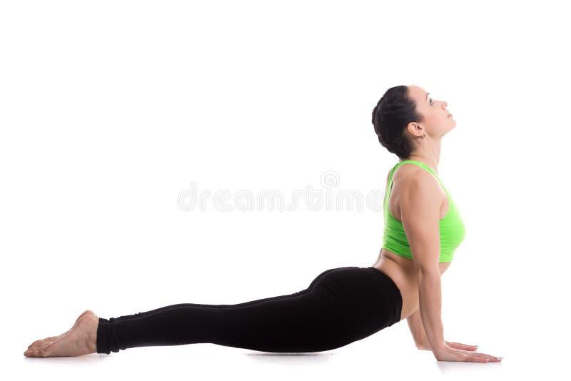 Yoga upward facing dog pose. Sporty girl doing exercises for flexible spine on white background, yoga asana from Surya Namaskar sequence, Sun Salutation complex stock photography