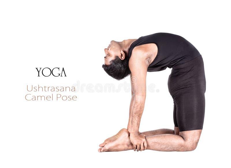 Yoga ushtrasana camel pose stock image