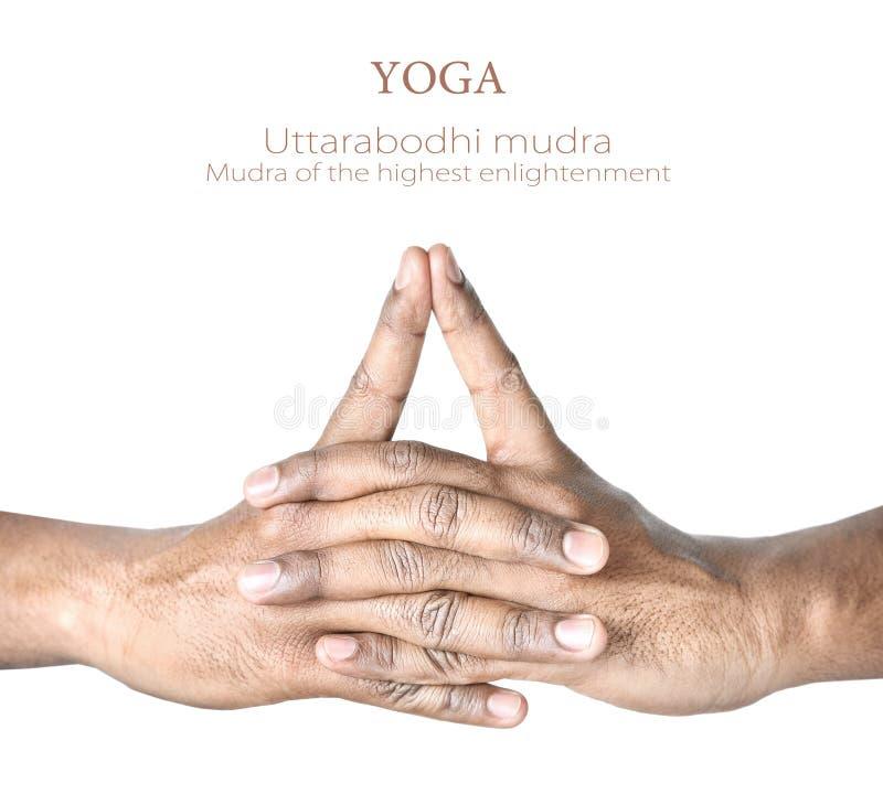 Yoga Uttarabodhi mudra lizenzfreie stockfotos