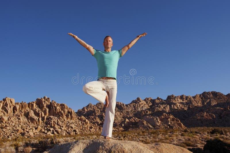 Yoga Vrkasana arkivbild