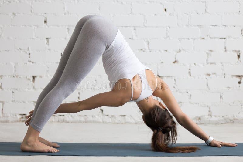 Yoga Zuhause: Abwärtsgerichtete Hundedrehhaltung Stockfoto - Bild ...