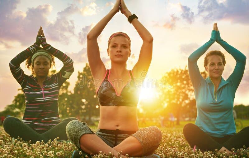 Yogagrupp av olika millennials i stående lotusblommaposition på gräset på solnedgången i natur parkerar royaltyfri fotografi