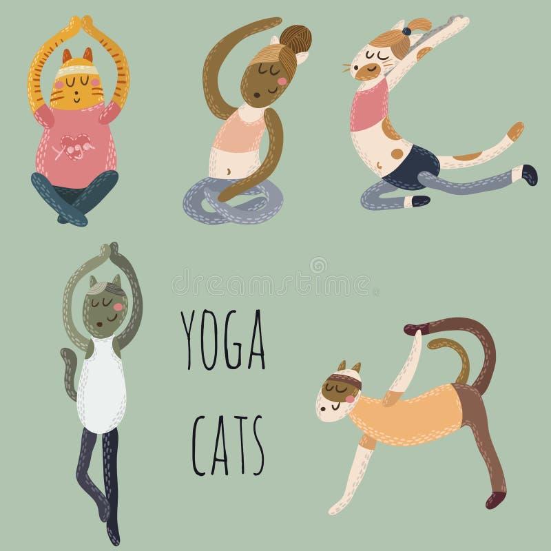 Yogakatter arkivbild